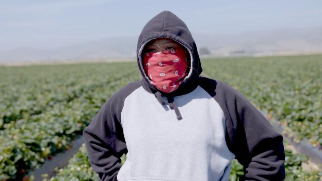SXSW 2021 Fruits of Labor