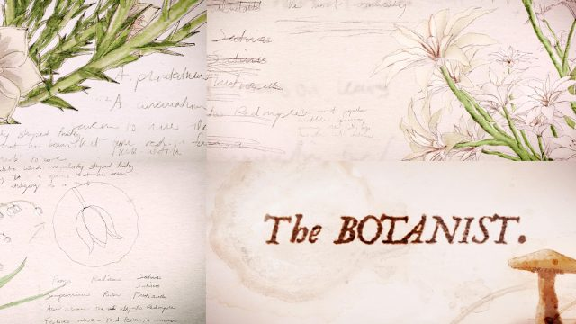 SXSW 2021 Film The Botanist Title Sequence