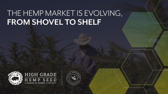 High Grade Hemp Seed from Shovel to Shelf